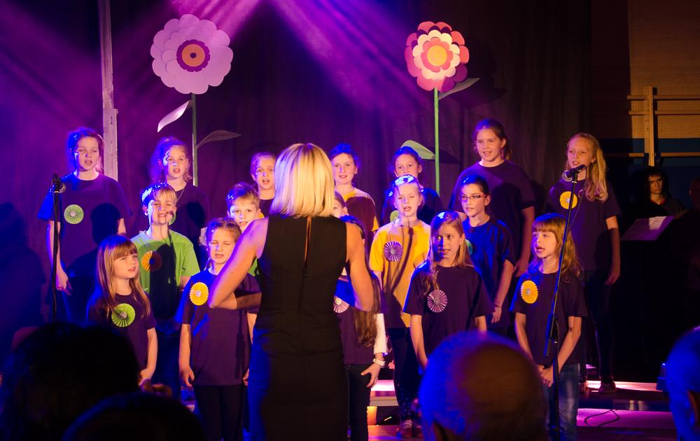 choir of the primary school OŠ Tržišče